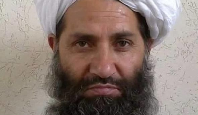Taliban leader urges Afghans to plant more trees