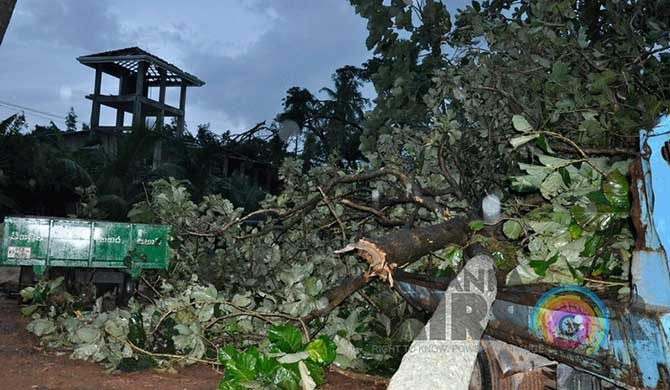 Strong winds in Negombo damage property (Pics)