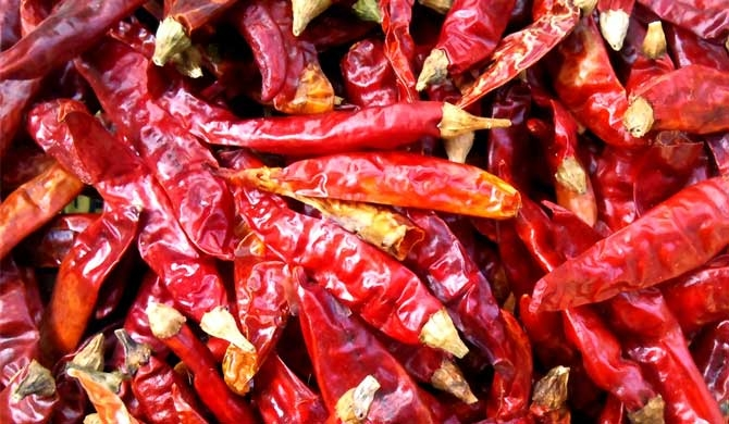 Suspicion over dried chilies imported from India