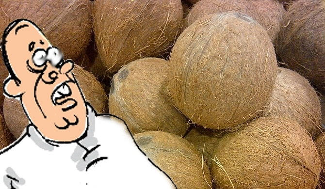 Minister's friend imports coconut illegally