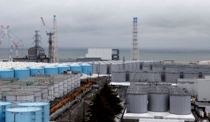 'Contaminated water from Fukushima could harm human DNA'