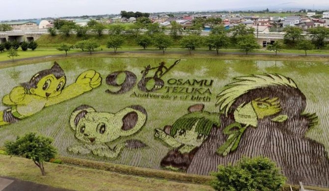 Manga artist Osamu Tezuka's most famous characters are created in a Japanese rice field