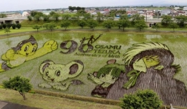 Rice paddy cartoons celebrate Japanese artist (Pics)