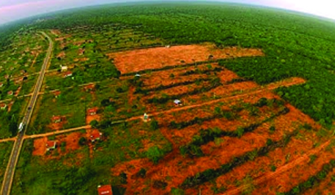 100 acres of Wilpattuwa cleared for Aloe Vera cultivation