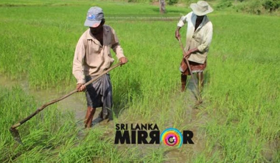 Farming underway in Maha season