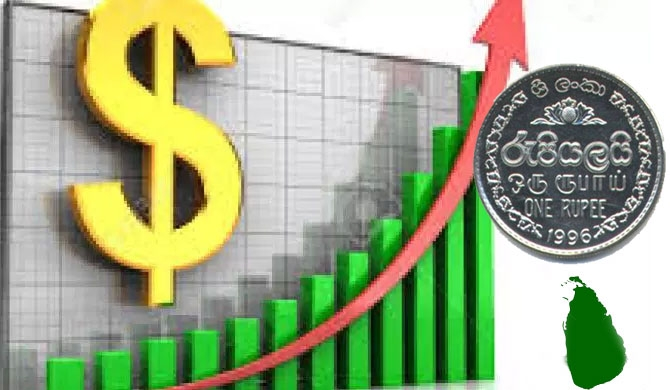 SL rupee hits record low of 178.00 against dollar