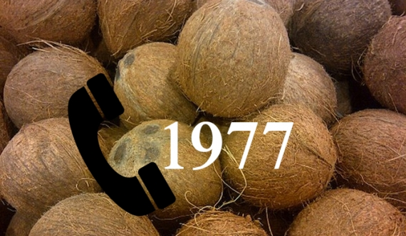 If coconuts are overpriced call - 1977