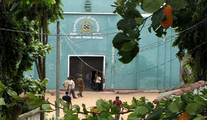 61 mobile phones found from Negombo prison