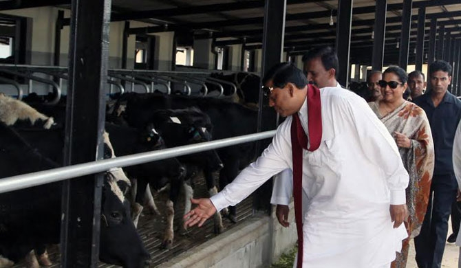 Harrison's ministry accused of fraud in milch cow distribution!