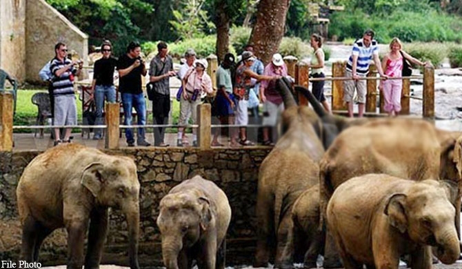 328 animals in zoos died within last 2 years