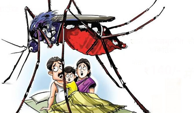 Over 40 dengue deaths this year