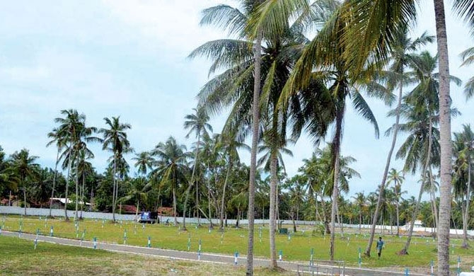 Coconut land blocking out continues despite presidential order