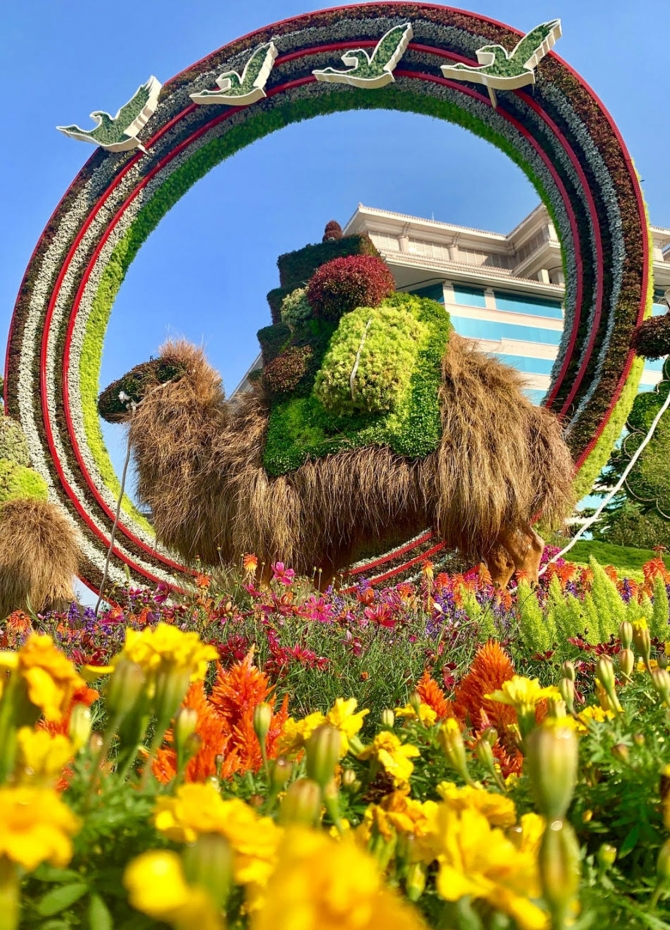Beijing blossoms for 70th anniversary (Pics)